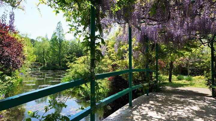 Monet's Garden in Kochi モネの庭 高知