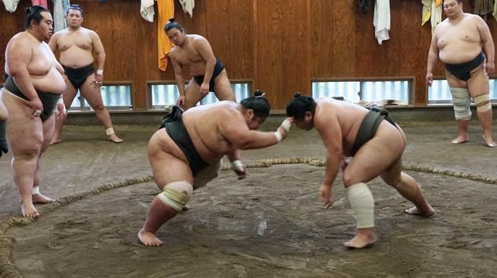 Sumo 相撲 力士 玉ノ井部屋 TAMANOIBEYA